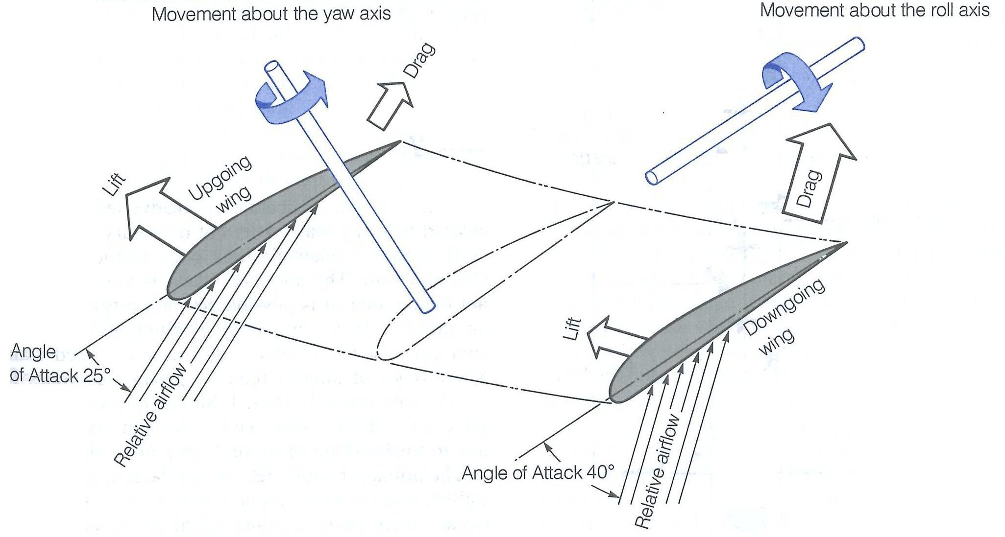 Forces in a Spin from the Canadian Flight Training Handbook.  Langley Flying School.
